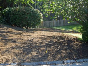 Lawn-and-Irrigation-Install